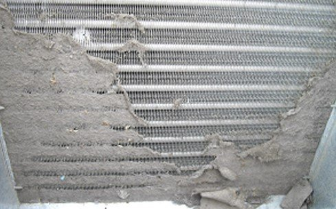 Cleaning Dehumidifier Coils