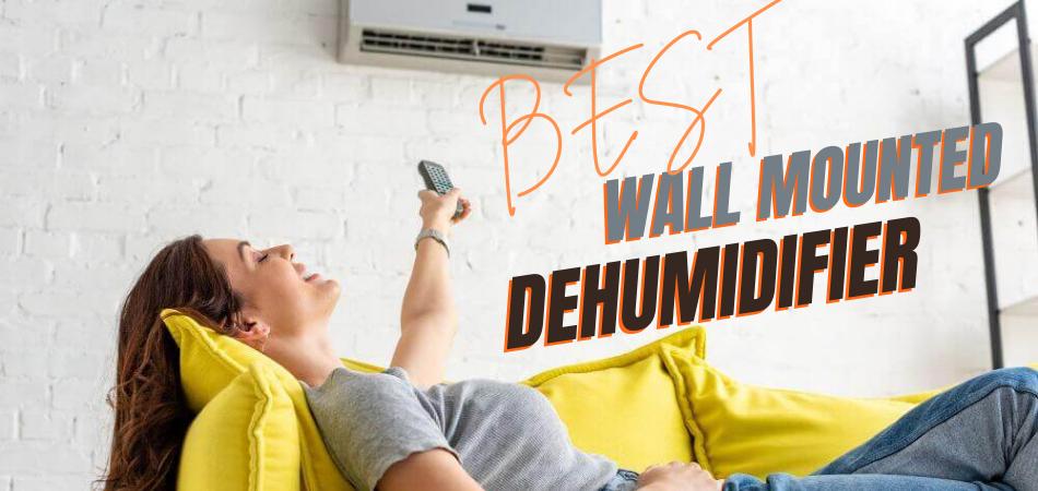 Best Wall Mounted Dehumidifier